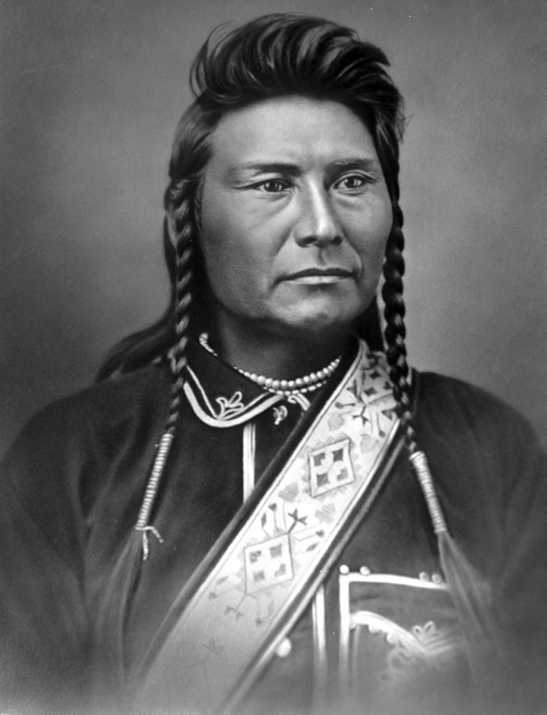 Chief Joseph Nez Perce by David Frances Barry Alice Wakers Garden