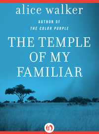 Book cover image THE Temple of my Familiar Alice Walker