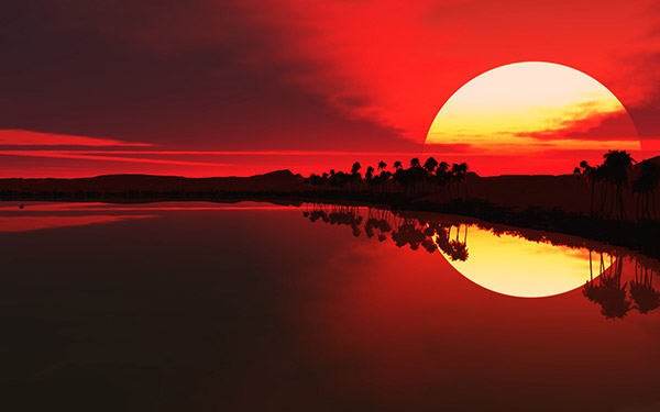 image of sun set alicewalkersgarden 2015 the year of changes