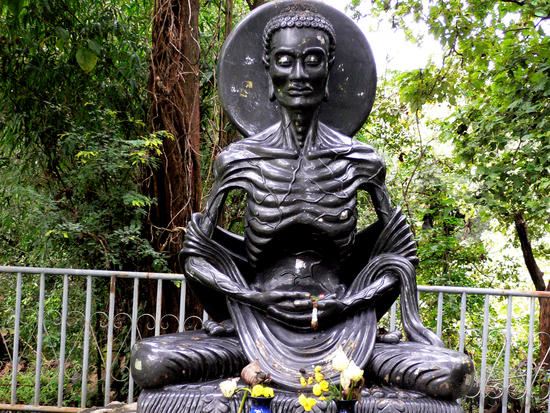 Emaciated Buddha on Alice Walker Garden Website