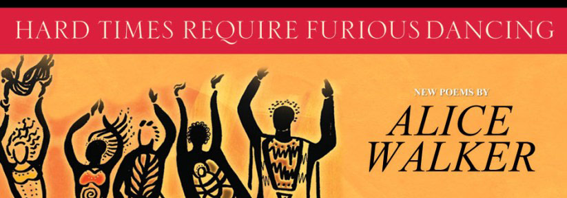 Hard Times Require Furious Dancing Book Cover Banner