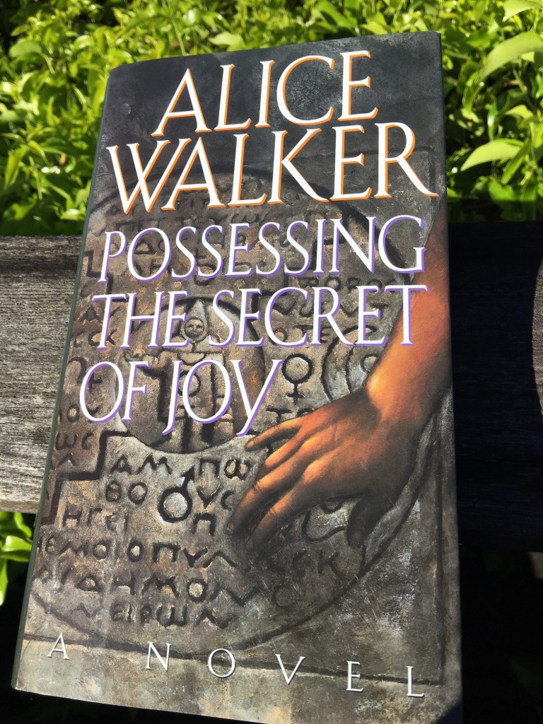 book cover: possessing the secret of joy alice walker