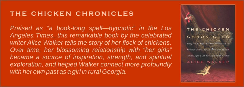 The Chicken Chronicles -- by Alice Walker