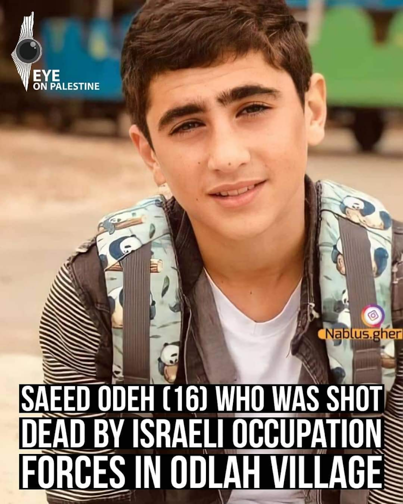 saeed odeh 16 years old shot dead by israeli occupation forces odlah village